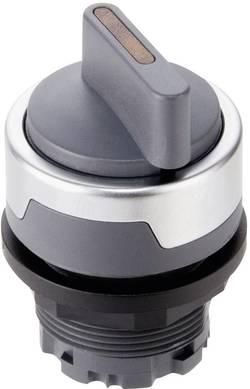 Bouton sélecteur Schlegel RMCWCL anthracite 2 x 45 ° 10 pc(s)