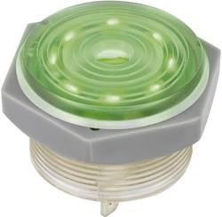 Générateur de signal piézo 1164637 95 dB 12 V 36.5 mm x 31 mm 1 pc(s)