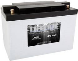 Batterie au plomb 12 V 125 Ah LifeLine GPL31XT 12V 125Ah plomb (AGM) (l x h x p) 328 x 236 x 172 mm raccord à vis M8 san