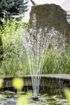 Pompe pour fontaine 120 W
