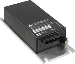 Elément convertisseur CC/CC Delta Electronics B62SR24125A Nbr. de sorties: 1 x 24 V/DC 12.5 A 300 W 1 pc(s)