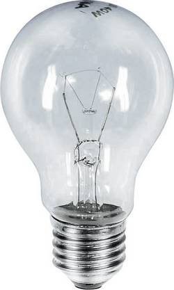 Ampoule à incandescence E27 235 V 60 W clair forme de poire 1 pc(s)