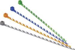 Serre-câbles 2.50 mm x 102 mm orange, blanc Panduit PLT1M-L3-10 crantage intérieur 50 pc(s)