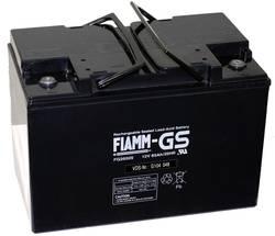 Batterie au plomb 12 V 65 Ah Fiamm Pb12-65-M6 plomb (AGM) (l x h x p) 271 x 190 x 166 mm raccord à vis M6 sans entretien