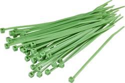 Serre-câbles 100 mm x 2.50 mm vert TRU COMPONENTS TC-CV100203 1593683 crantage intérieur 100 pc(s)