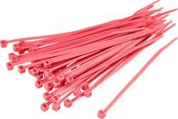 Serre-câbles 250 mm x 4.80 mm rouge TRU COMPONENTS TC-CV250203 1593704 crantage intérieur 100 pc(s)