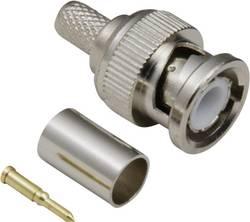 Connecteur BNC mâle, droit 75 Ω BKL Electronic 0401002/D 1 pc(s)