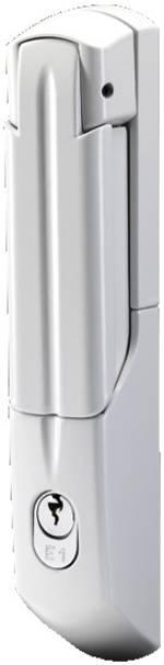 Poignée confort avec serrure VW E1 Rittal 2537.045 gris clair 1 pc(s)