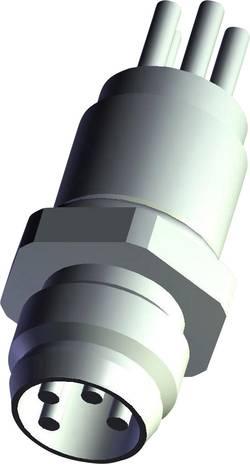 Embase M8 TE Connectivity T4070014041-001 embase mâle Nbr de pôles: 4 1 pc(s)
