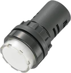 Voyant de signalisation LED TRU COMPONENTS 140406 blanc 12 V/DC, 12 V/AC 20 mA 1 pc(s)