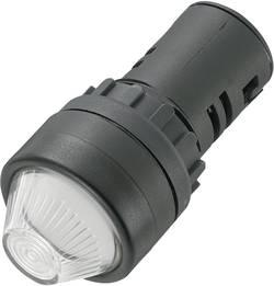 Voyant de signalisation LED TRU COMPONENTS 140424 blanc 24 V/DC, 24 V/AC 20 mA 1 pc(s)