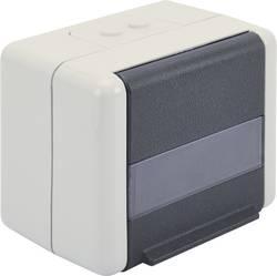 Prise réseau en saillie 2 ports Digitus Professional DN-93844-OD gris