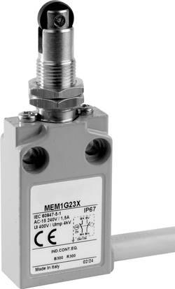 Interrupteur de fin de course 24 V 5 A poussoir à galet pivotable Panasonic MEM1G22ZD IP67 1 pc(s)