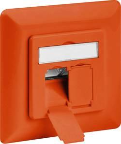 Prise réseau encastrable insert avec plaque centrale et châssis CAT 6A 2 ports Goobay 71583 orange