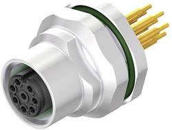 Connecteur à équiper pour capteurs/actionneurs Weidmüller SAIE-M12B-8-H5.5TL-M16 2421640000 Pôle: 8 10 pc(s)