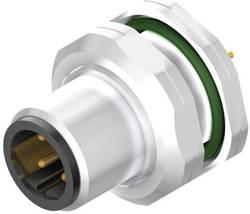 Connecteur à équiper pour capteurs/actionneurs Weidmüller SAIE-M12SB-4-H5.5TL-PG9 2421700000 Pôle: 4 10 pc(s)