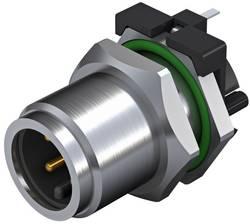 Connecteur à équiper pour capteurs/actionneurs Weidmüller SAIE-M12S-4-H5.5TL 2423300000 Pôle: 4 10 pc(s)
