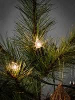 Eclairage pour arbre de Noël pour l'intérieur Konstsmide 1027-000 Ampoule à incandescence clair 1 pc(s)