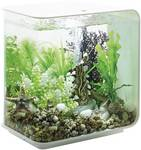 Aquarium en acrylique biOrb FLOW LED 15 L, blanc