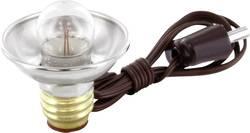 Ampoule témoin 3.50 V 0.70 W Culot E10 clair BELI-BECO GL371 bn/10 10 pc(s)