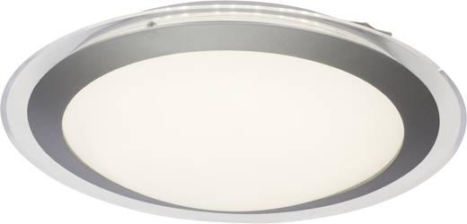 LED pour salle de bain blanc chaud Brilliant G 75 Ciara 12 W