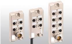 Répartiteur passif 8 voies AlphaWire 902-5M NC032 1 pc(s)