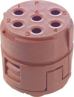Insert 6 pôles EPIC® SIGNAL M23 LappKabel 73002760 5 pc(s)
