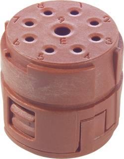 Insert 8+1 pôles EPIC® SIGNAL M23 E LappKabel 73002743 20 pc(s)