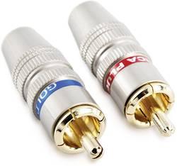 Connecteur RCA Sinuslive CS-2