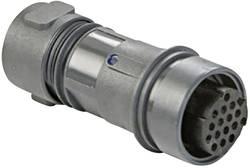"""""""Connecteur de câble mâle série Buccaneer 6000 Bulgin Buccaneer 6000 PXP6011/02P/ST/0507 1 pc(s)"""""""