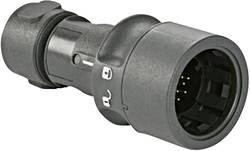 """""""Connecteur de câble mâle série Buccaneer 6000 Bulgin Buccaneer 6000 PXP6010/08P/CR/0709 1 pc(s)"""""""