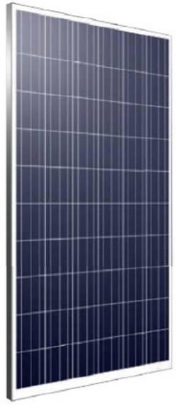 Phaesun PN6P60-265 E Module solaire polycristallin 265 Wp 24 V