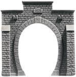Portes de tunnel TT 1 « Profi-Plus », vernies