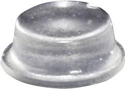 Pied d'appareil TOOLCRAFT PD2104C autocollant, rond transparent (Ø x h) 10 mm x 4 mm 1 pc(s)