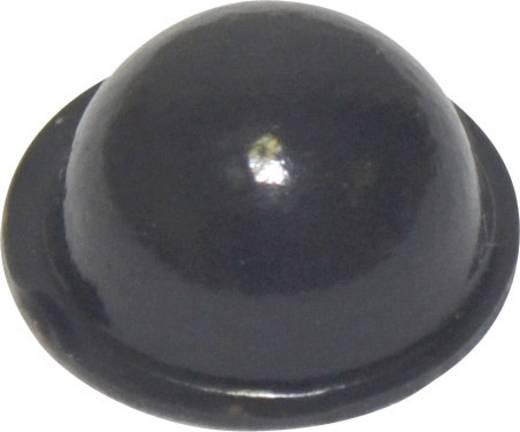Pied d'appareil TOOLCRAFT PD2150SW autocollant, rond noir (Ø x h) 15.9 mm x 6.35 mm 1 pc(s)