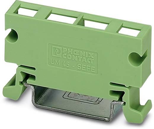 Elément latéral de boîtier pour rail Phoenix Contact UM 45-SEFE O.N. 2959793 plastique 10 pc(s)