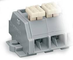 Barrettes à bornes WAGO 261-255/332-000 10 mm ressort de traction Affectation des prises: L gris 100 pc(s)