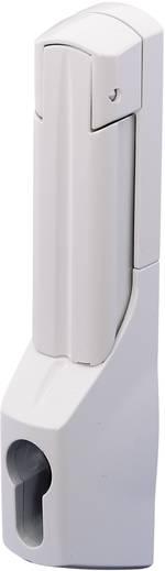 Poignée confort pour serrure demi cylindre Rittal 2537.000 gris (RAL 7035) 1 pc(s)