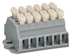 Barrettes à bornes WAGO 261-426/341-000 6 mm ressort de traction Affectation des prises: L gris 50 pc(s)