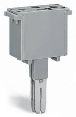 Module à diodes WAGO 280-803/281-420 50 pc(s)