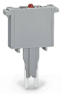 Fiche à fusible WAGO 280-850/281-414 100 pc(s)