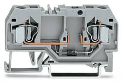 Bloc de jonction à diode WAGO 281-915/281-400 6 mm ressort de traction Affectation des prises: L gris 50 pc(s)