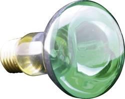 Ampoule à incandescence E27 40 W=40 W vert réflecteur 1 pc(s)