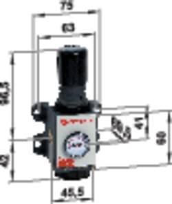 Régulateur de pression avec manomètre 0 bar (min) connexion G1/4 Norgren R92G-2GK-RMG