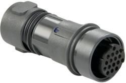 Bulgin PXP6011/03P/ST Connecteur circulaire mâle, droit Série: P