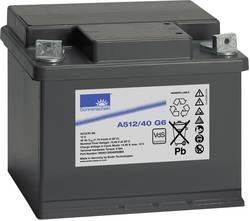 Batterie au plomb 12 V 40 Ah GNB Sonnenschein A512/40 G6 plomb-gel (l x h x p) 210 x 175 x 175 mm raccord à vis M6 sans