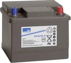 Batterie au plomb 12 V 40 Ah GNB Sonnenschein A512/40 A plomb-gel (l x h x p) 210 x 175 x 175 mm pôle conique sans entre