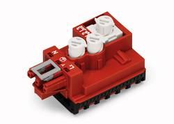Module dérivateur câble rond - câble plat WAGO 772-269 Nbr total de pôles: 3 rouge 1 pc(s)