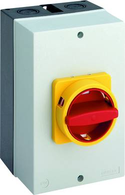 Interrupteur sectionneur Sälzer B263-41300-710N4 63 A 1 x 90 ° jaune, rouge 1 pc(s)