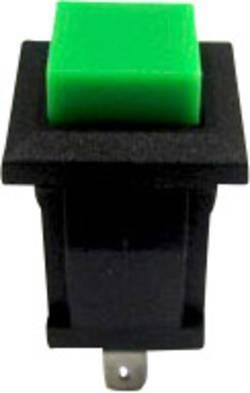 Bouton-poussoir à rappel TRU COMPONENTS TC-R13-57A-05GN 1587715 250 V/AC 0.5 A 1 x Off/(On) à rappel 1 pc(s)